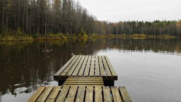Труп молодой девушки выловили из Суздальского озера в Петербурге