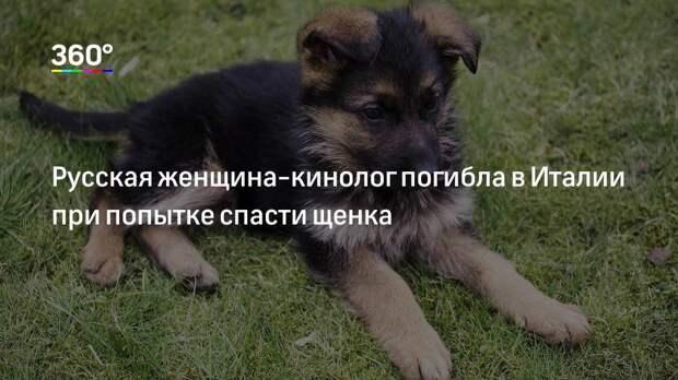 Русская женщина-кинолог погибла в Италии при попытке спасти щенка