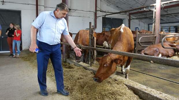 Роботизация предприятий даст возможность крымским аграриям акцентировать внимание на улучшении производственных процессов - Андрей Рюмшин