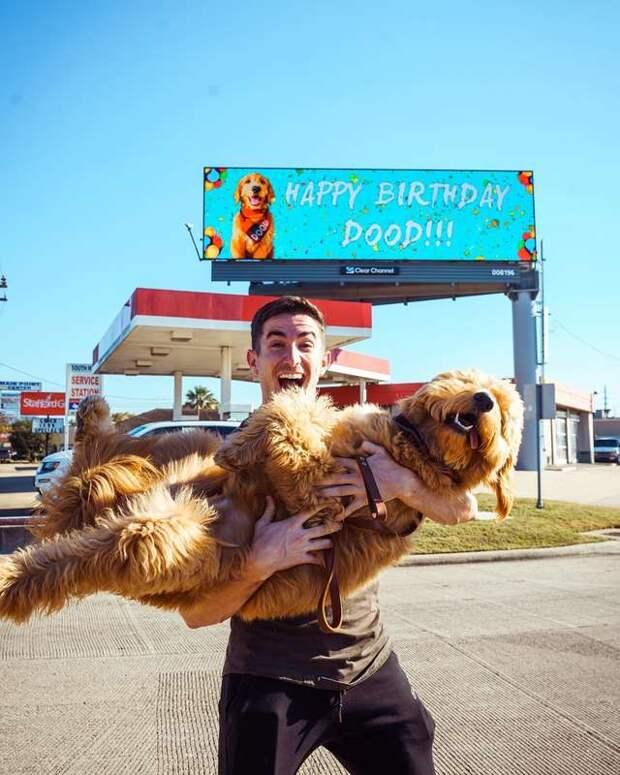 Парень так сильно любит своего пса, что решил закатить грандиозный праздник в честь его Дня рождения