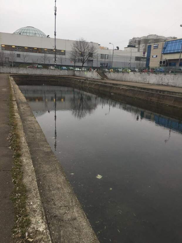 В пруду на Перерве установили причину гибели рыбы