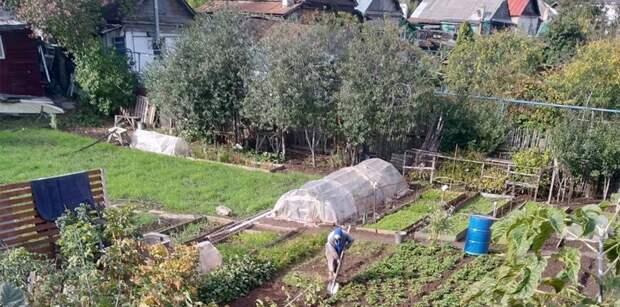 Запрет на изменение целевого назначения земель для дач и садов могут установить в Казахстане