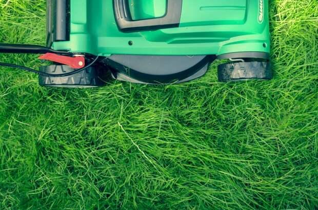 Скошенную траву с тротуара на Комсомольской убрали