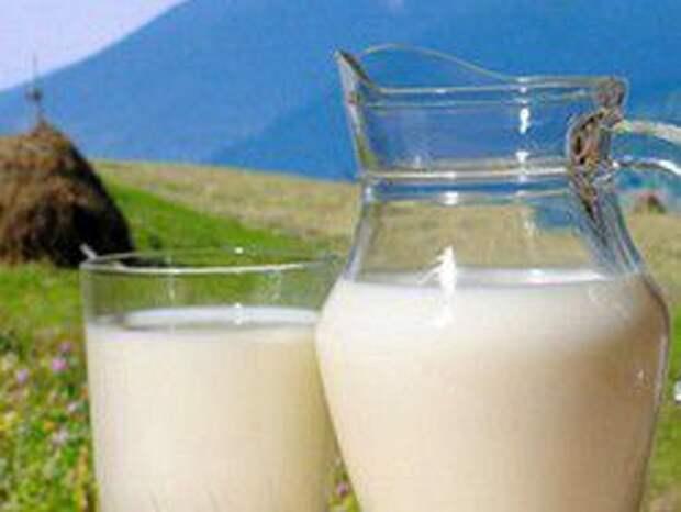 Новость на Newsland: Россия отказалась от украинского молока